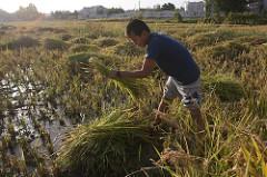 Poverty-Environment witnesses Tajikistan
